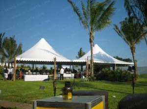 Our High quality 10x10m pagoda tent in Mexico (5)